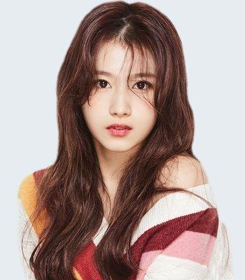 Thông tin profile Sana nhóm Twice