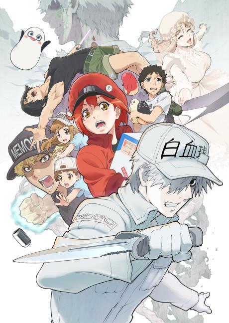 Hataraku Saibou!! (Cells at Work! Season 2)